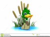 Free Clipart Duck Pond Image