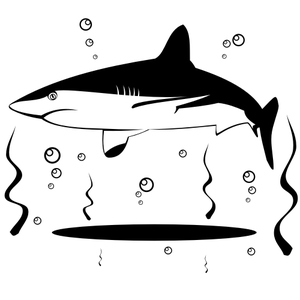 Shark Vector X Image