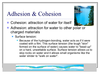 Cohesion Of Water Image