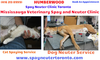 Mississauga Veterinary Spay And Neuter Clinic Image