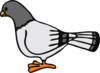 Cartoon Pigeon Clip Art