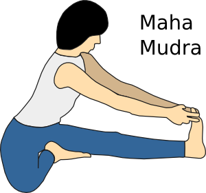 Yoga Position Maha Mudra clip art - vector clip art online ...