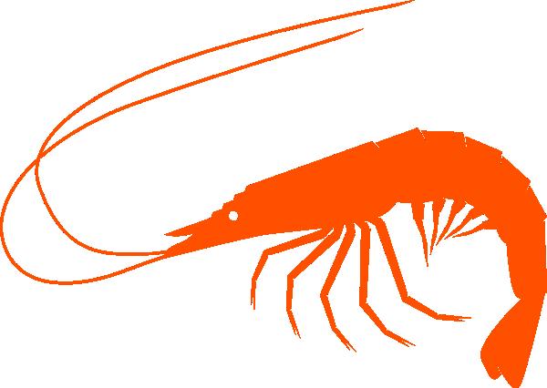 orangeshrimp clip art at clker com vector clip art online royalty rh clker com Oyster Clip Art Shrimp Logos Clip Art