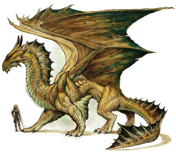 bronze dragon free images at clker com vector clip art Yin Yang Vector Rough Yin Yang No Dots