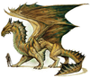 Bronze Dragon Image