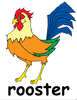 Clipart Picture Of A Rooster Image
