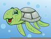 Seaturtle Clipart Image