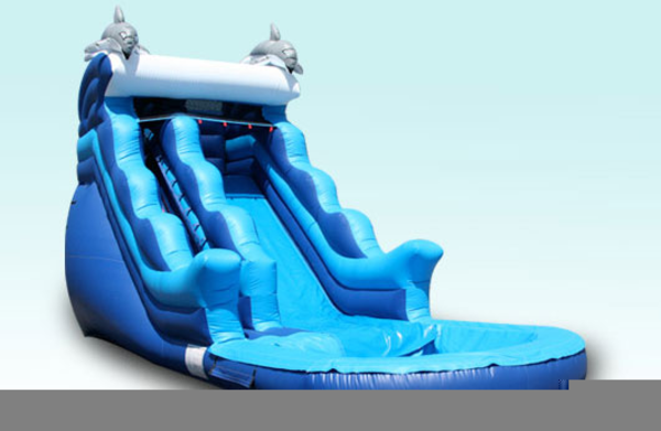 Dolphin Water Slides   Free Images at Clker com - vector clip art