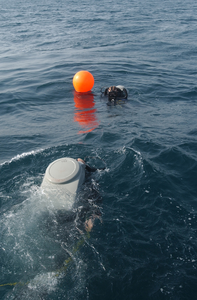 Eodmu-6 Swim To A Reference Buoy Image