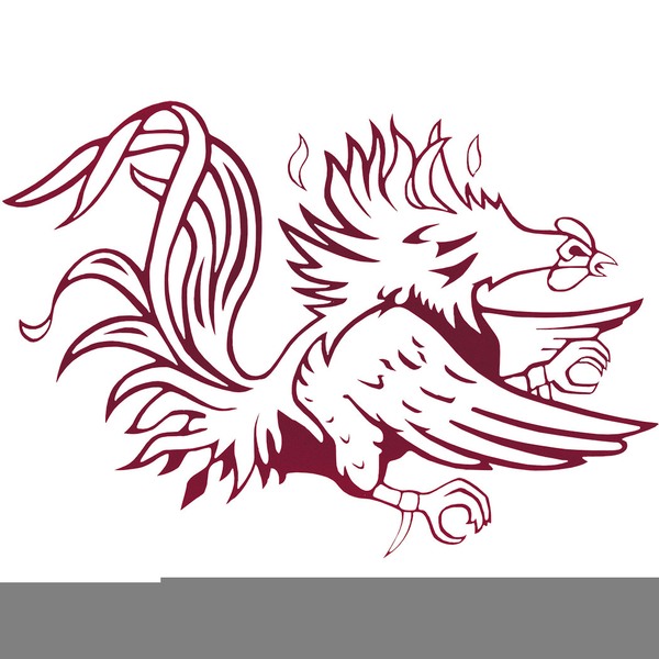 usc gamecock clipart free images at clker com vector clip art rh clker com gamecock clipart free gamecock clipart free