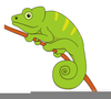 Chameleon Tongue Clipart Image