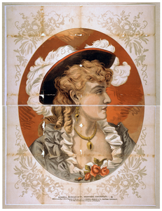 [bust View Of Woman, Wearing Plumed Hat And Gray Dress] Image