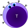 T-cell No Sign Clip Art