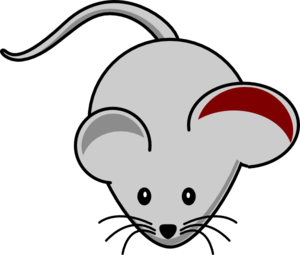 Mouse Ear Inflamation Clip Art