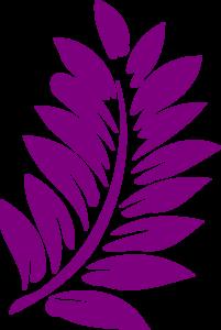 hibiscus-brenda-md.png