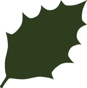 Dark Green Leaf Clip Art