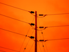 Power Lines Against Orange Sky Image