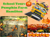 School Tour Pumpkin Farm Hamilton Image