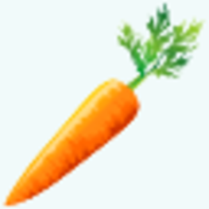 Carrot Icon Image