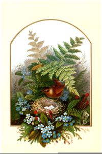 Free Vintage Bird Clip Art - Bird Nest, Cliparts & Cartoons - Jing.fm
