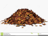 Free Clipart Pile Of Leaves Image