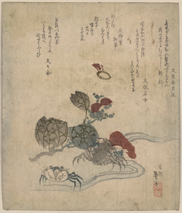 Benkei Crab And Camellia. Image