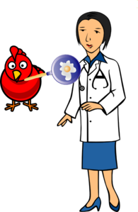 Doctor With Hen And Egg Clip Art