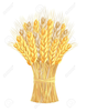 Wheat Sheaf Clipart Image