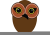 Owl Cartoon Images Image