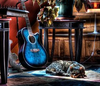 Cat Guitar Photography E Ef Ce C D Aa C C M Image