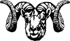 Dall Sheep Ram Clip Art