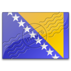 Flag Bosnia And Herzegovina 6 Image