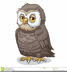 Clipart Wise Old Owl Image