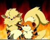 Growlithe And Arcanine Image