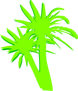 2 Palm Trees Clip Art
