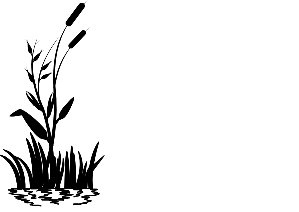 cattail clip art at clker com vector clip art online royalty free rh clker com cattails clipart black and white
