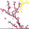 Free Cherry Blossom Clipart Image