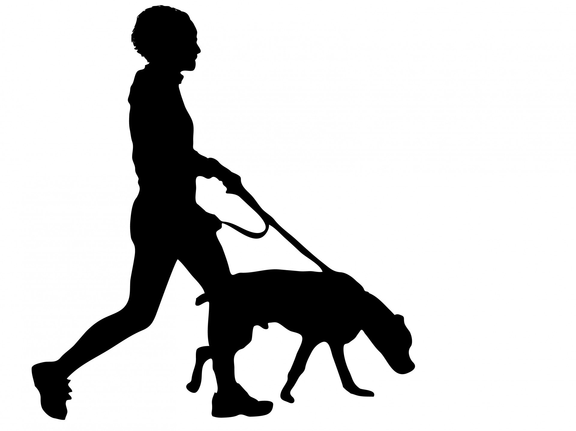 Dog Walking Zhy | Free Images at Clker.com - vector clip ...