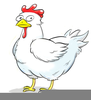 Hen Cartoon Pictures Image