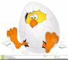 Cracked Easter Egg Clipart Image