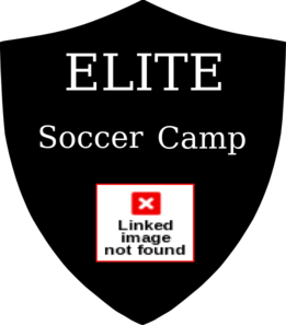 Elite Soccer With Ball 2 Clip Art