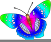 Clipart Pictures Of Butterflies Image