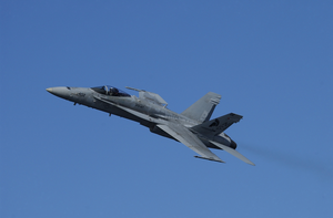 Vfa-147 Hornet - High Speed Pass Image