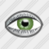 Icon Eye Image