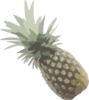 Pineapple Svg Med Image