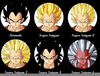 Vegeta All Transformations Image