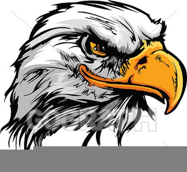 cartoon hawk clipart free images at clker com vector clip art rh clker com hawk clipart easy hawk clipart png