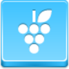 Free Blue Button Icons Grapes Image