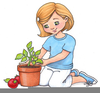 Seeds Growing Clipart Image