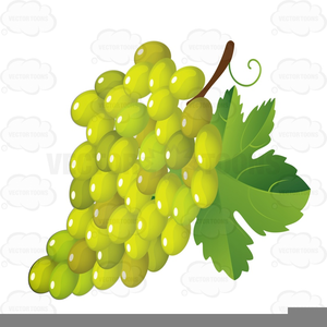 Grape Leaves Clipart Image